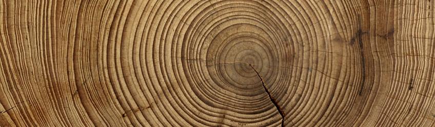 Viele Historiker datieren den Beginn der Verschmelzung von Astronomie und.
